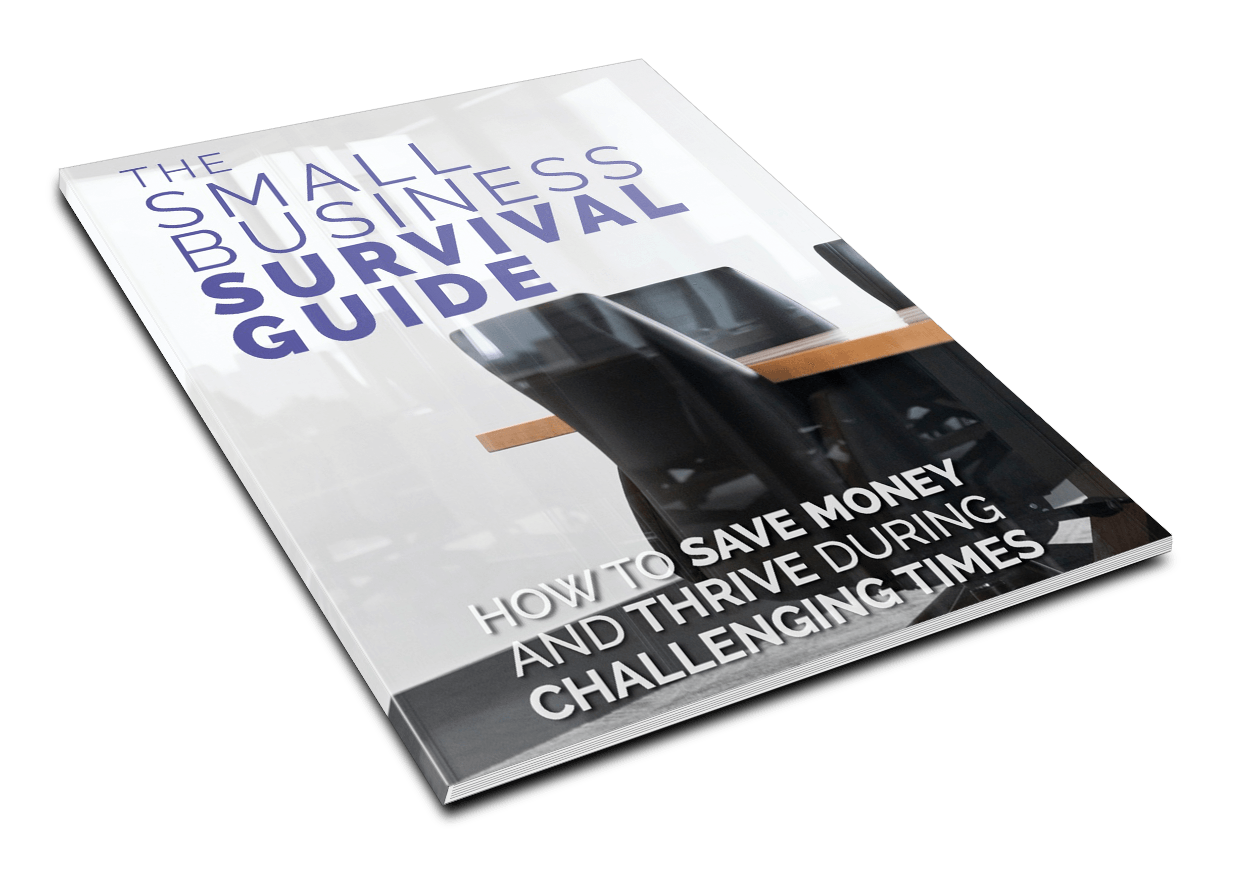 Small Business Survival Guide - 1